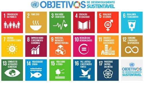 17 exemplos de negócios sociais que atendem os ODS